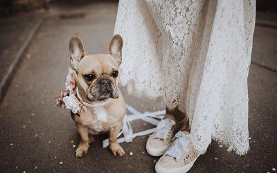Zapatillas ideales para tu boda