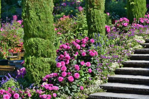 mainau_island_lake_constance_lake_stairs_view_water_summer-553350